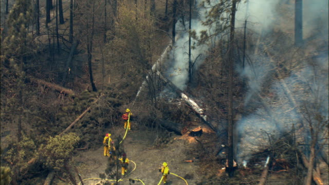 ws zi zo aerial firefighters fighting battle flames in forest / california, usa - kalifornien stock-videos und b-roll-filmmaterial
