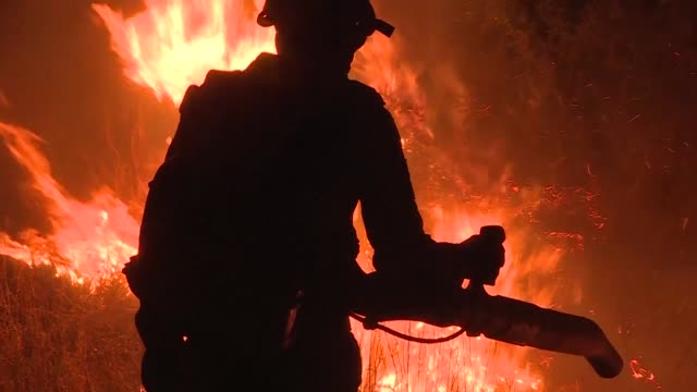 firefighters in argentina are struggling to control a series of wildfires that have devastated nearly one million hectares of the country's famous... - argentina video stock e b–roll