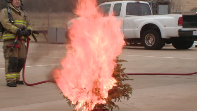 firefighters in oklahoma city held a demonstration using two trees set up side by side on dec 4 2014 one of the trees had been watered daily while... - weihnachtsbaum stock-videos und b-roll-filmmaterial