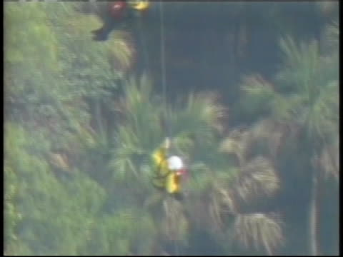 firefighters rappel from a helicopter as they attempt to fight wildfires in florida. - abseiling stock videos & royalty-free footage