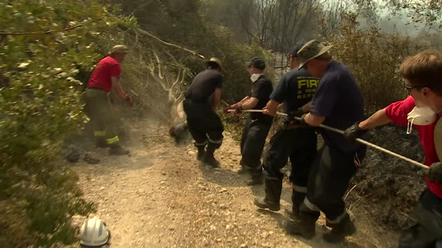 firefighters remove trees to gain access and create fire breaks as they help tackle the wildfires in the peloponnese region of greece - creativity stock videos & royalty-free footage