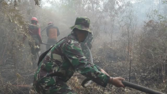 firefighters trying to extinguish the flames in kampar district riau province indonesia on july 26 2019 firefighters find it difficult to extinguish... - environmental damage stock videos & royalty-free footage