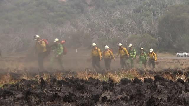firefighters walk across terrain with charred vegetation in australia. - environment or natural disaster or climate change or earthquake or hurricane or extreme weather or oil spill or volcano or tornado or flooding stock videos & royalty-free footage