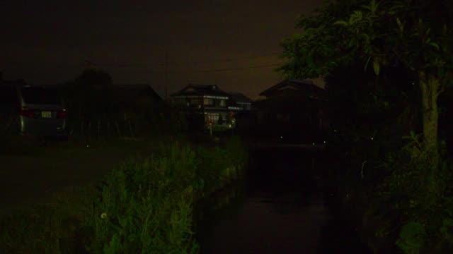 stockvideo's en b-roll-footage met fireflies fly over stream at edge of village, japan. - vuurvliegje