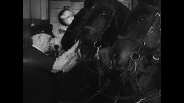 firehouse int fire station w/ firemen horses being led hitched up to fire engine firemen sliding down pole brooklyn firefighters firemen - fire station stock videos & royalty-free footage