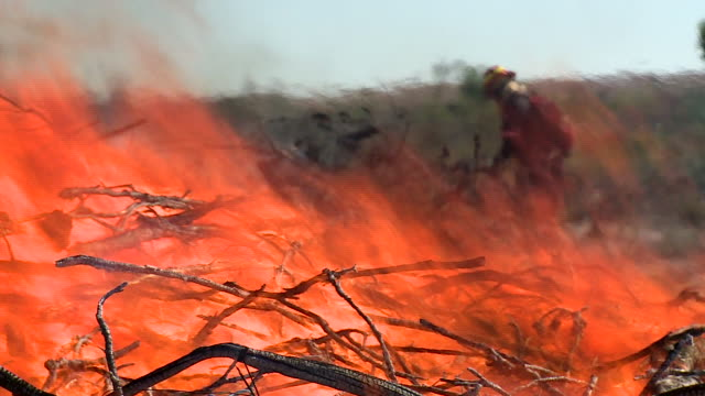 fireman and brush fire - firefighter stock videos and b-roll footage