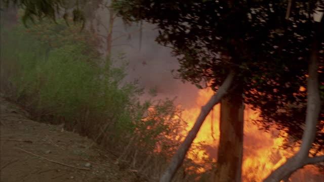 WS PAN Firemen fighting brush fire / California, USA