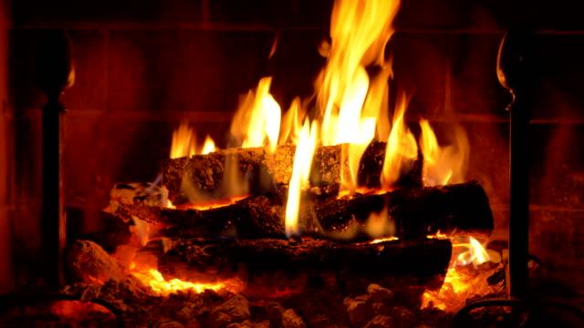 vídeos de stock, filmes e b-roll de fireplace in the living room - tronco parte de planta