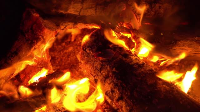 暖炉 - カバノキ点の映像素材/bロール