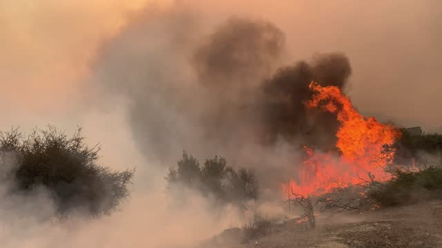 fires burn on the side of a highway during the silverado fire in irvine, ca, on monday, october 26, 2020. - irvine verwaltungsbezirk orange county stock-videos und b-roll-filmmaterial