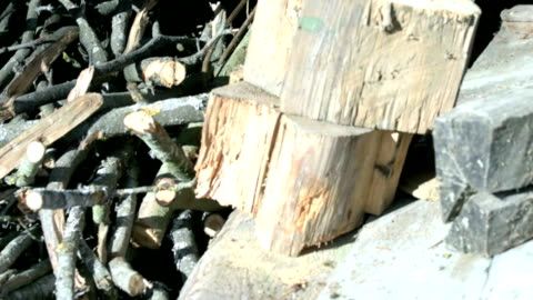 brennholz-stapel schieben - baumstumpf stock-videos und b-roll-filmmaterial