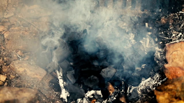 firewoods burns in the fire - briquette stock videos & royalty-free footage