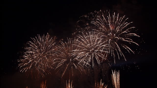 MS, Firework display against black sky