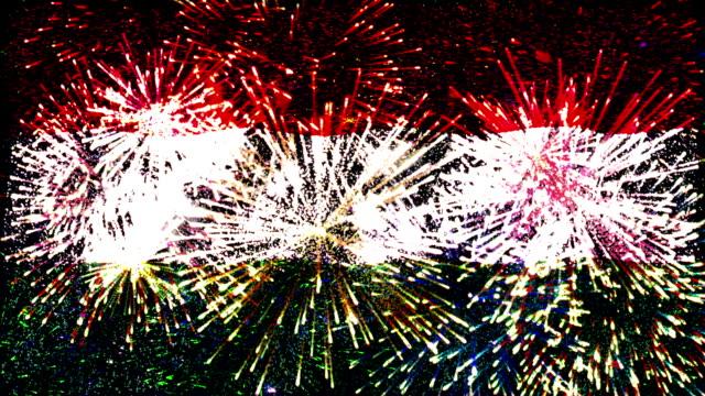 vídeos de stock, filmes e b-roll de exibição de fogos de artifício bandeira da hungria - cultura húngara