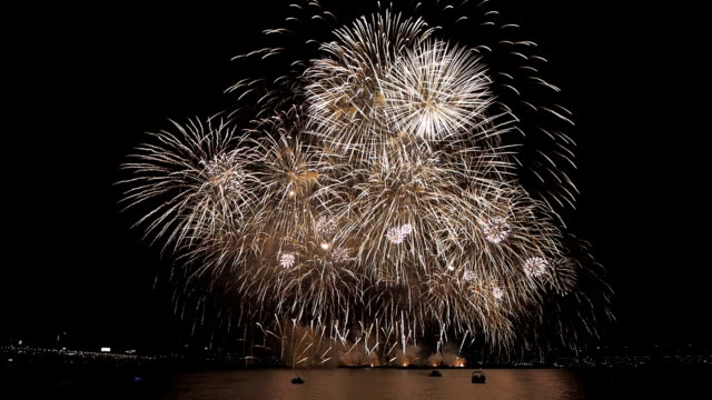 firework display of the seoul international firework festival at the han river - firework display stock videos & royalty-free footage