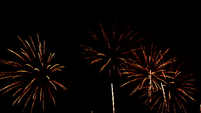 Firework In Night Sky Full HD Video