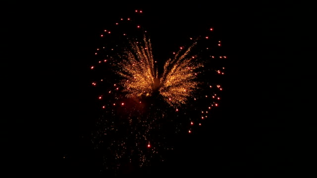 SLOW MO Fireworks in the Night Sky
