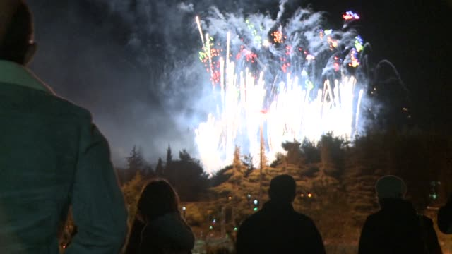 fireworks light the sky as israelis began celebrating independence day marking 65 years since the declaration of statehood on may 14, 1948. clean :... - 14 15 years stock videos & royalty-free footage