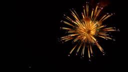fireworks on the night sky