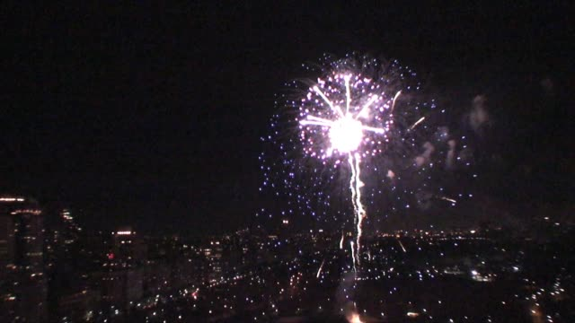 stockvideo's en b-roll-footage met fireworks over central park, new york city on new years eve 2012, shot from roof of building. fireworks over central park on january 01, 2012 - salmini