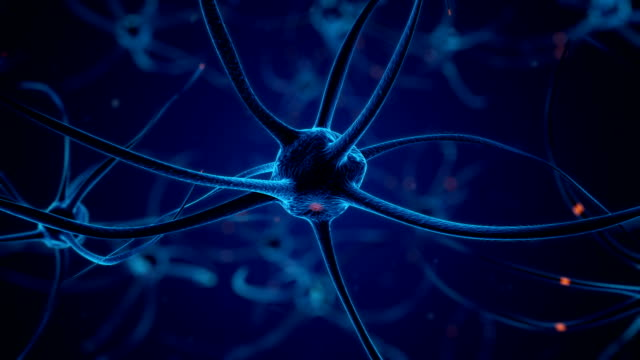 firing neurons in blue - human nervous system stock videos & royalty-free footage