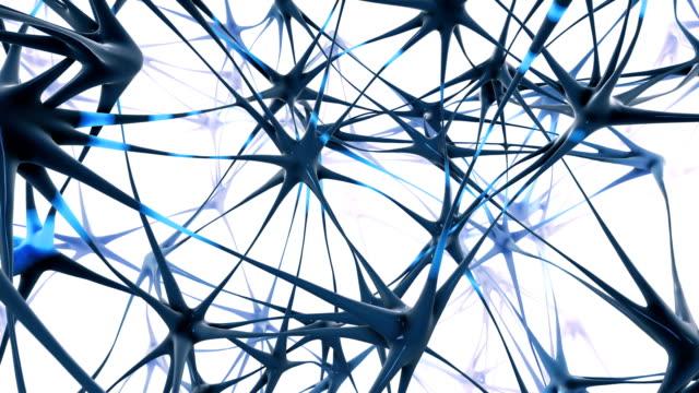 vídeos de stock e filmes b-roll de firing neurons tracking shot (white / blue) - loop - axónio