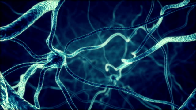 firing neurons - human nervous system stock videos & royalty-free footage