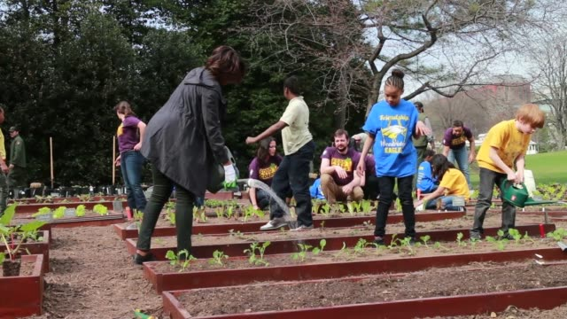 stockvideo's en b-roll-footage met ws first lady michelle obama joins foodcorps leaders and local students to plant the white house kitchen garden for the sixth year in a row in 2009... - directrice
