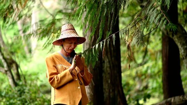 vídeos de stock, filmes e b-roll de primeira mulher das nações que abençoa uma árvore de cedro - tribo norte americana