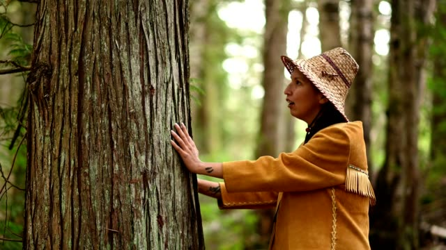 first nations woman blessing a cedar tree - environmentalist stock videos & royalty-free footage