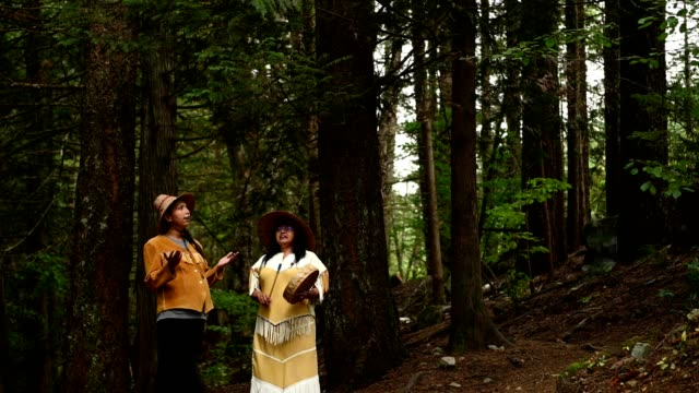first nations women in traditional clothing - indigenous peoples of the americas stock videos & royalty-free footage