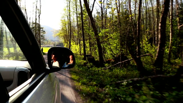 First person perspective driving along an alpine road