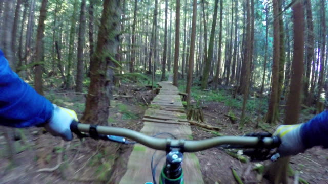 first person perspective mountain biking through rainforest - motorcycle racing stock videos and b-roll footage