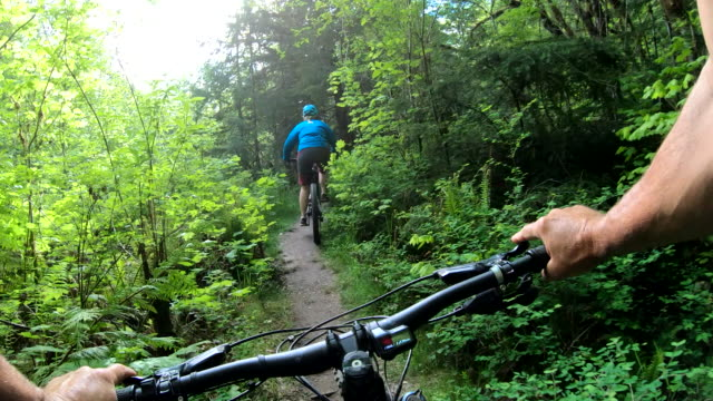 first person perspective of e-mountain biking on forest trail - サイクリングロード点の映像素材/bロール