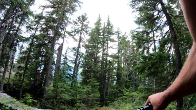 stockvideo's en b-roll-footage met eerste persoon perspectief van mountain biker aflopende smalle trail - narrow