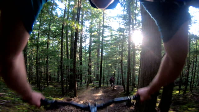 first person perspective of mountain biker descending narrow trail - ascentxmedia stock videos & royalty-free footage