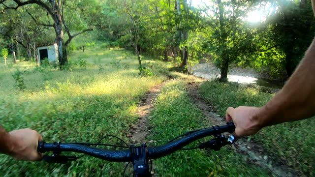 ジャングルトラックに沿ったマウンテンバイクの一人称視点 - サイクリングロード点の映像素材/bロール