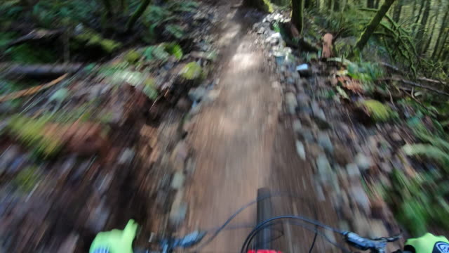 first person perspective of mountain biking lush green forest - bicycle trail outdoor sports stock videos & royalty-free footage