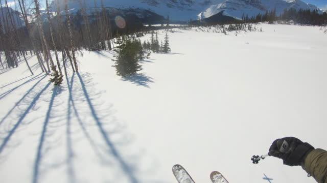 vídeos de stock e filmes b-roll de first person perspective skiing  down a steep powder slope - bastão de esqui