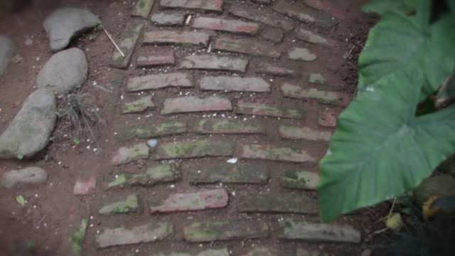 stockvideo's en b-roll-footage met a first person point of view of walking down a brick road. - baksteen