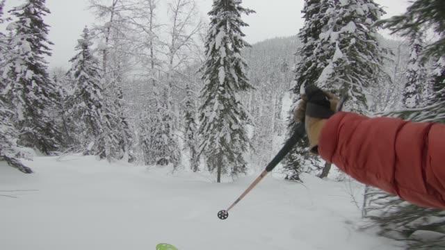 erste person sicht ski pulver durch wald - skijacke stock-videos und b-roll-filmmaterial