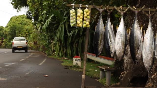 fish and produce market - pazifikinseln stock-videos und b-roll-filmmaterial