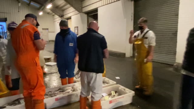 fish auction and processing in fleetwood, lancashire, england, u.k., on tuesday, october 20, 2020. - dead animal stock videos & royalty-free footage