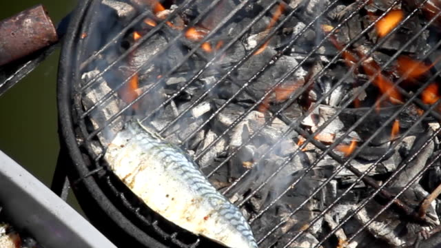 fish bbq - hd, ntsc - briquette stock videos & royalty-free footage