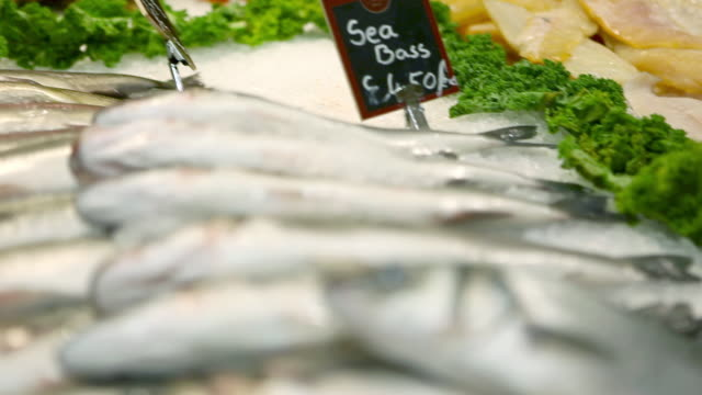 Fish counter in supermarket