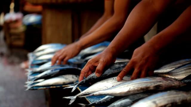 fish in street food market - fish market stock videos & royalty-free footage