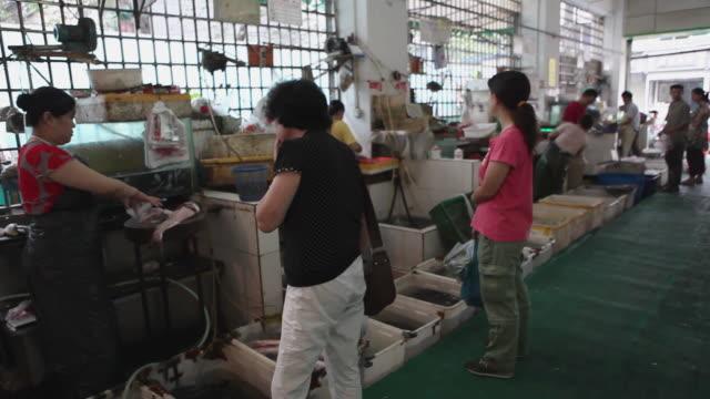 vídeos y material grabado en eventos de stock de ws pan fish market / beijing, china - noreste de china