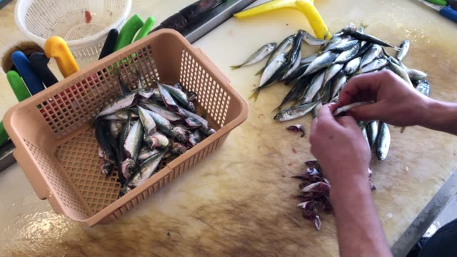 fish market - fish cleaning - mullet fish stock videos & royalty-free footage