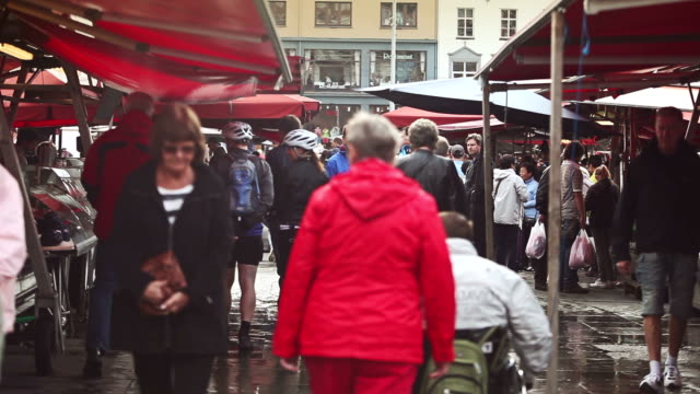 fish market of bergen - fish market stock videos and b-roll footage
