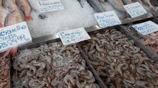 fish market - テナガエビ点の映像素材/bロール